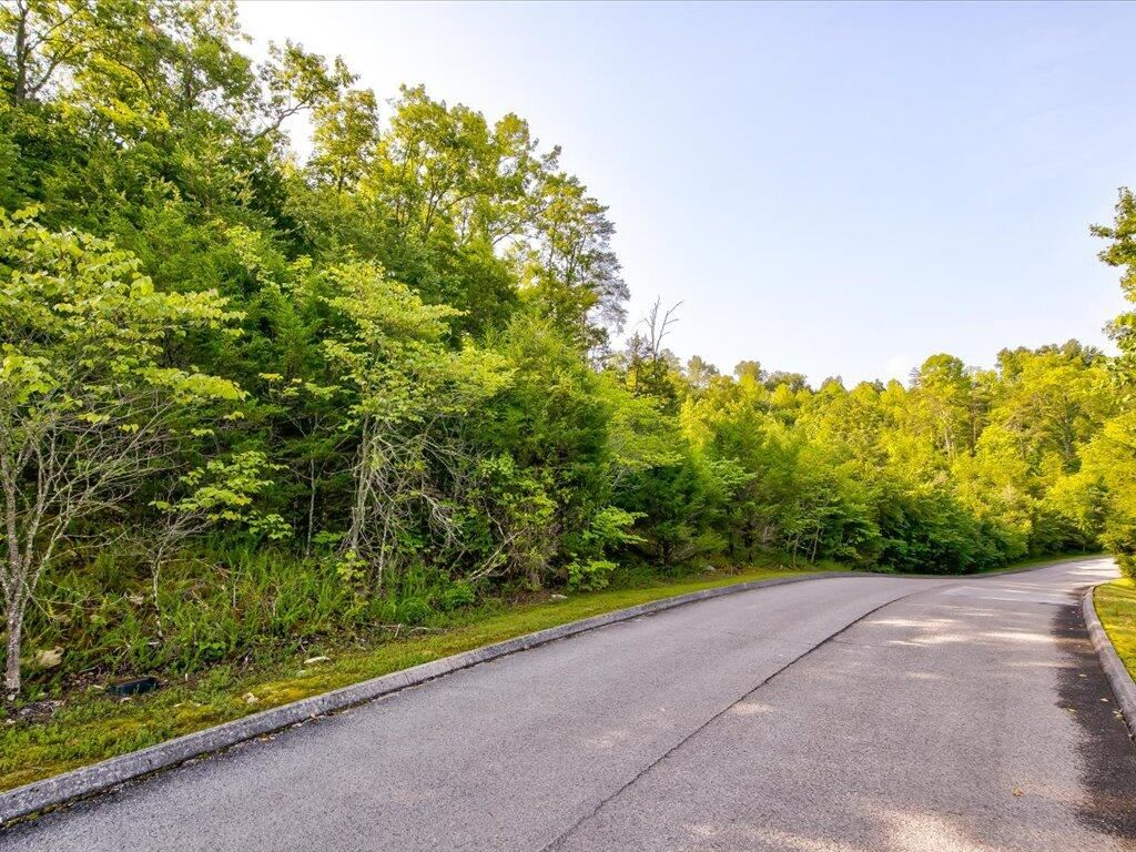 Photo of Lot 263 Woodlake Boulevard, Tazewell, TN 37879 (MLS # 9927092)