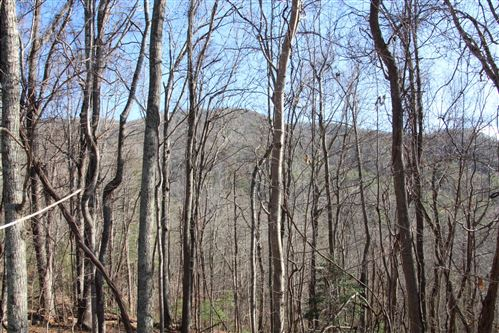 Photo of 000 Pinecrest Street, Mountain City, TN 37683 (MLS # 9903098)