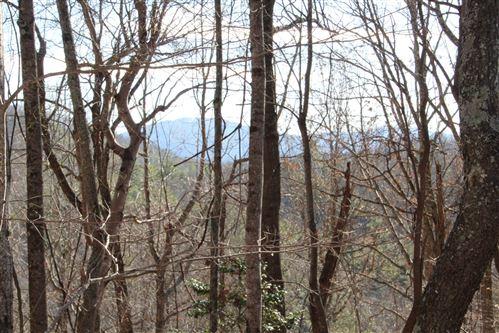 Tiny photo for 000 Pinecrest Street, Mountain City, TN 37683 (MLS # 9903098)