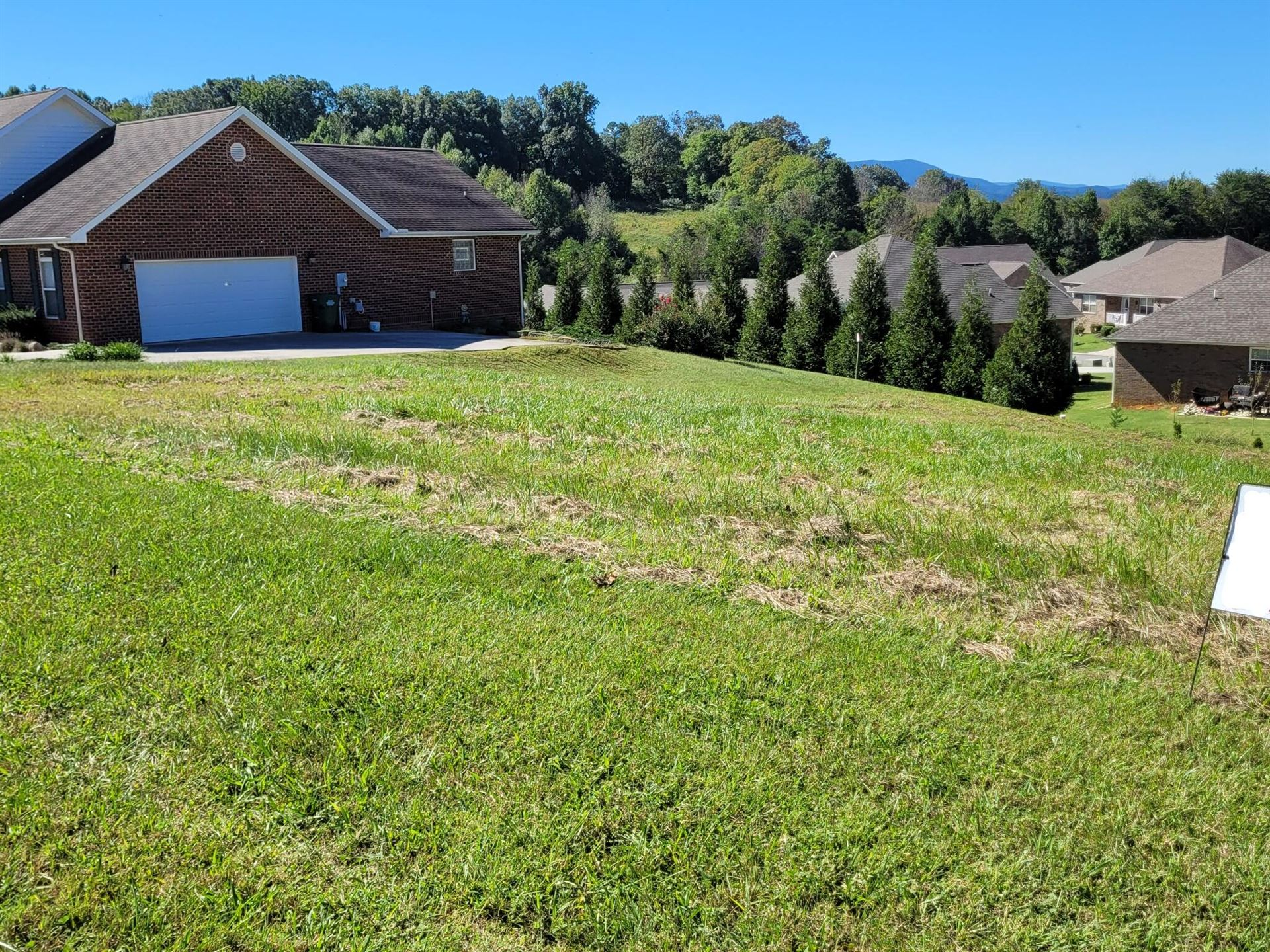 Photo of 1815 Placid Drive, Sevierville, TN 37862 (MLS # 9929105)