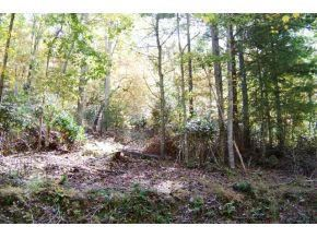 Photo of 00 Browns Ridge Lane, Mountain City, TN 37683 (MLS # 9916132)
