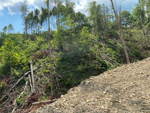 Tiny photo for Tbd Forge Creek Road, Mountain City, TN 37683 (MLS # 9925132)