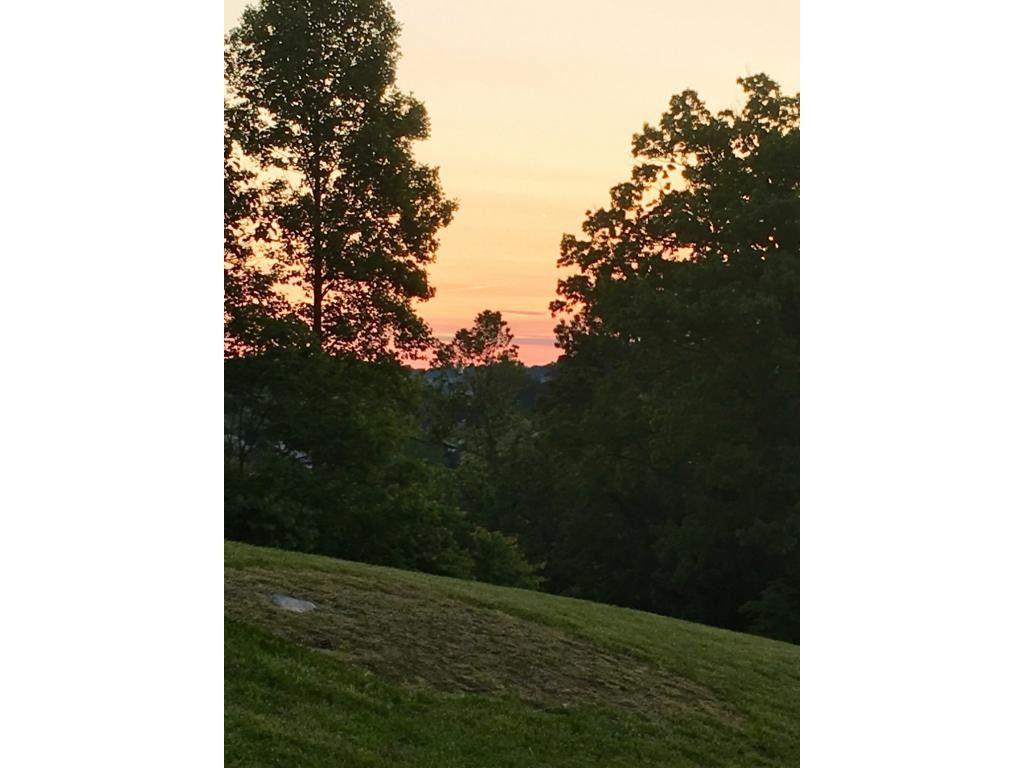 Photo of 1111 Hawk Nest Court, Jonesborough, TN 37659 (MLS # 378140)