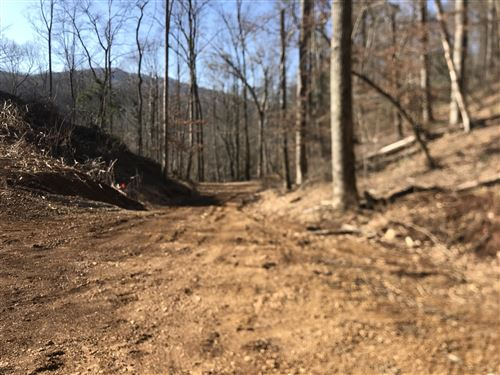 Photo of Tbd Rhea Road, Mountain City, TN 37683 (MLS # 9919148)