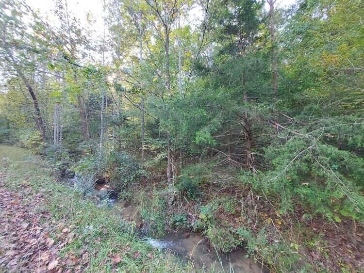 Photo of 30 Acres Gunter Corner Road, Parrotsville, TN 37843 (MLS # 9930150)