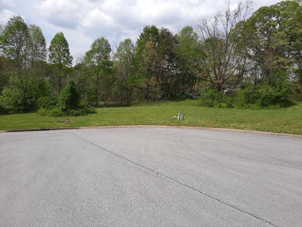 Photo of 125 Fountain (Lot #5) Court, Johnson City, TN 37604 (MLS # 9922161)