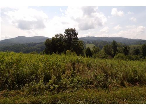 Photo of Tbd Buffalo Run Lot 9, Mountain City, TN 37683 (MLS # 9908164)