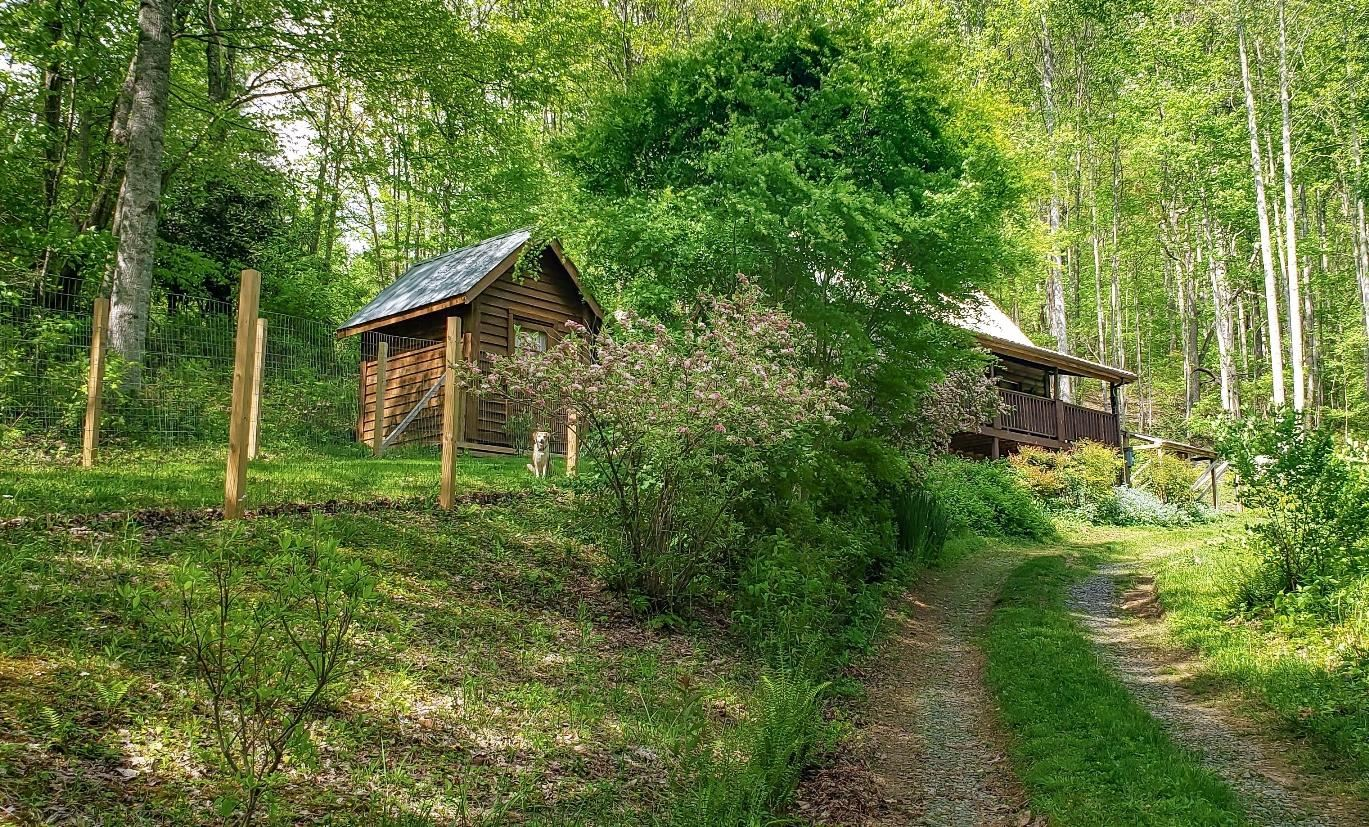 Photo for 2720 Fall Branch Road, Mountain City, TN 37683 (MLS # 9921167)