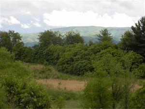 Tiny photo for Lot 6 Bonita Way, Greeneville, TN 37745 (MLS # 392175)