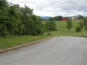 Tiny photo for Lot 8 Bonita Way, Greeneville, TN 37745 (MLS # 392178)