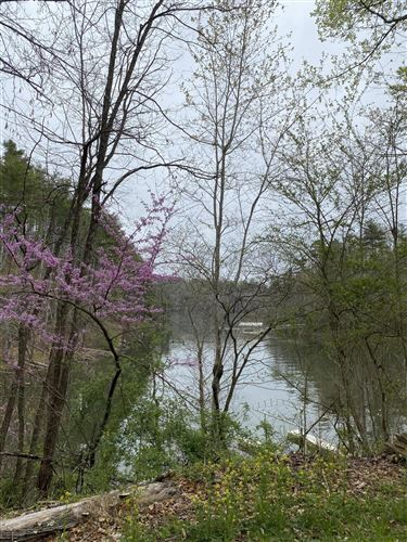 Photo of 0 Campbell Road, Bulter, TN 37640 (MLS # 9921186)
