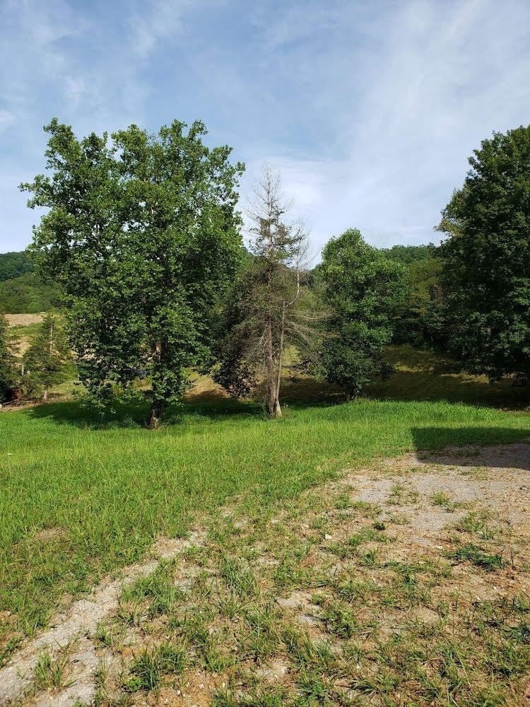 Photo of 925 Upper Caney Valley Road, Tazewell, TN 37879 (MLS # 9928189)