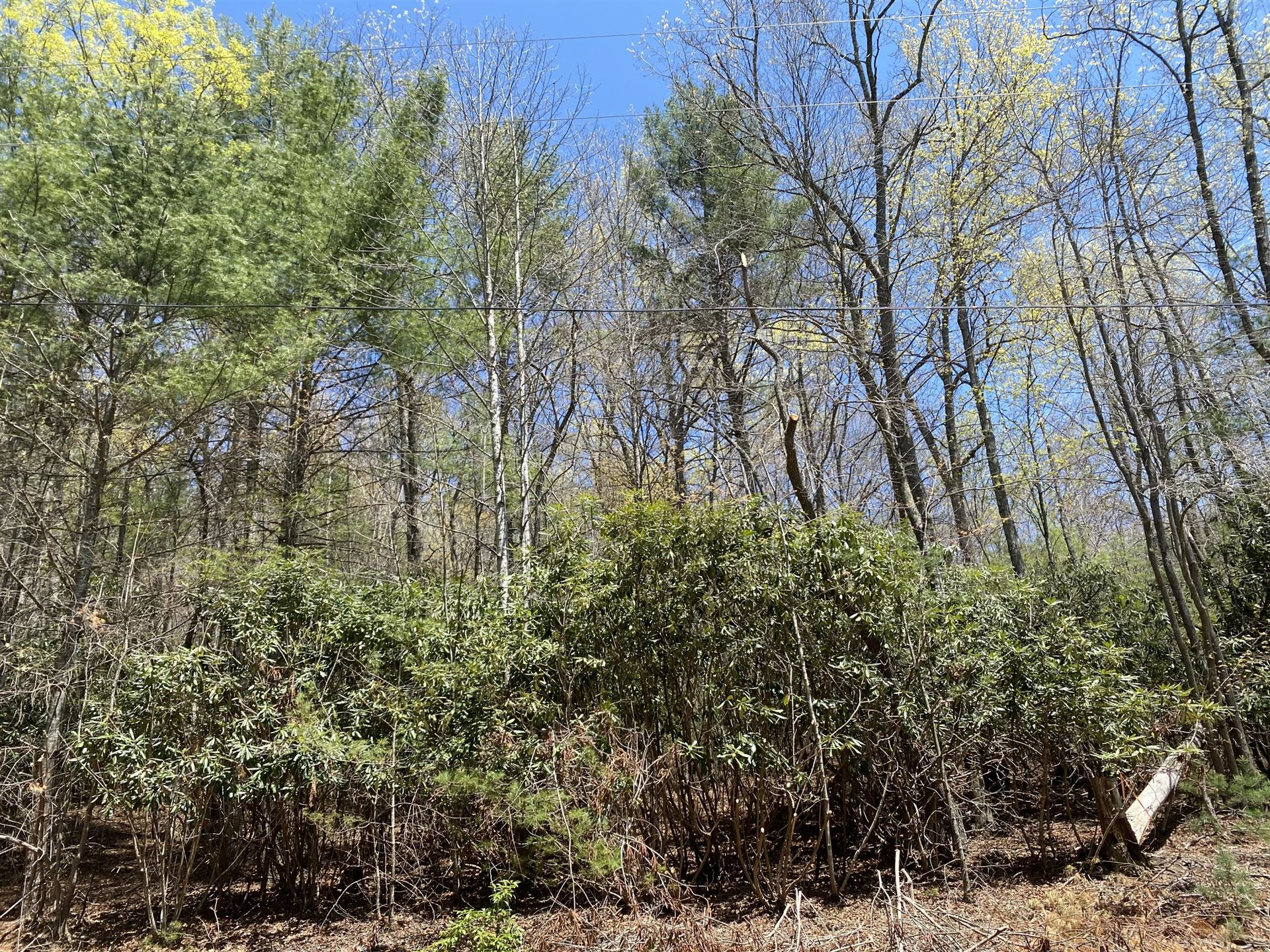 Photo of 0 Valley Creek Road, Mountain City, TN 37683 (MLS # 9922195)