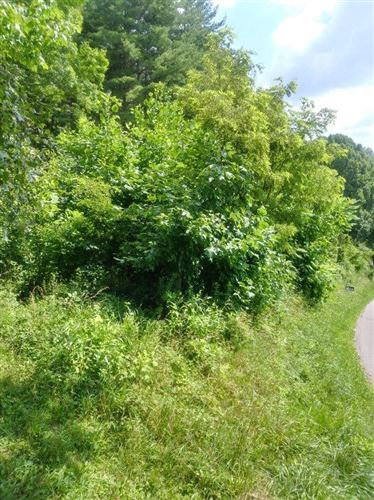 Photo of Tbd Red Brush Road, Mountain City, TN 37683 (MLS # 9925197)