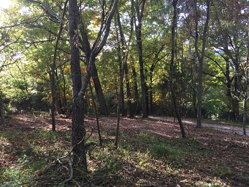 Photo of Lot 1 Charles Johnson Road, Chuckey, TN 37641 (MLS # 9915213)
