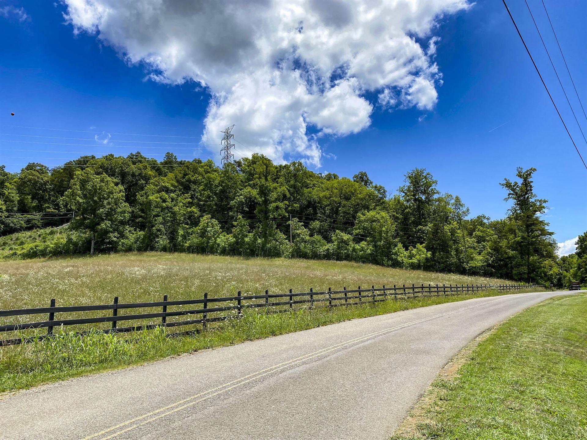 Photo of 0 Cook Mill Road, Dandridge, TN 37725 (MLS # 9925218)