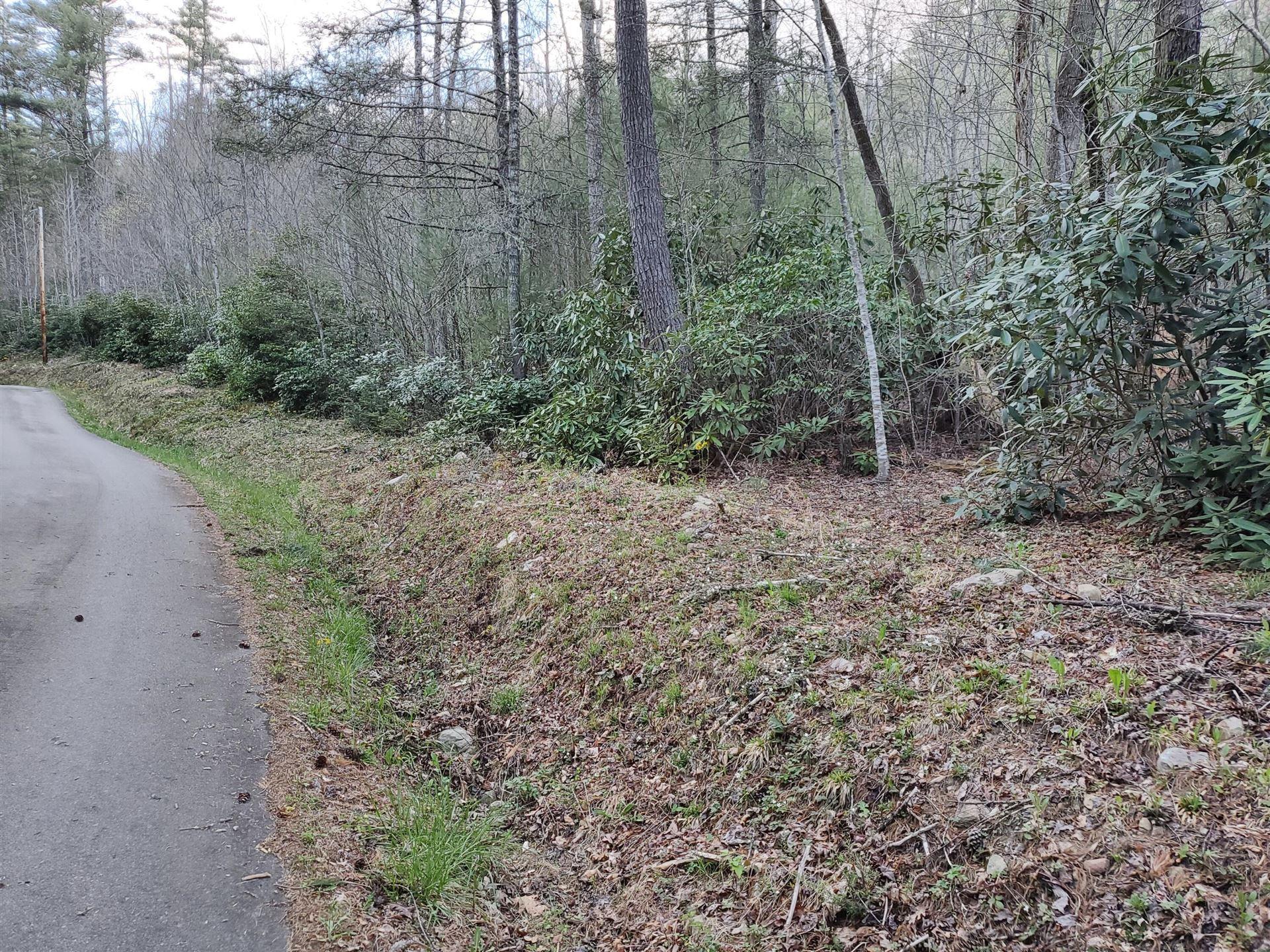 Photo of Tbd Hill Street, Bulter, TN 37640 (MLS # 9921223)