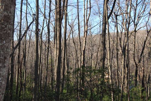Tiny photo for 849 Myrtle Drive, Butler, TN 37640 (MLS # 9903226)