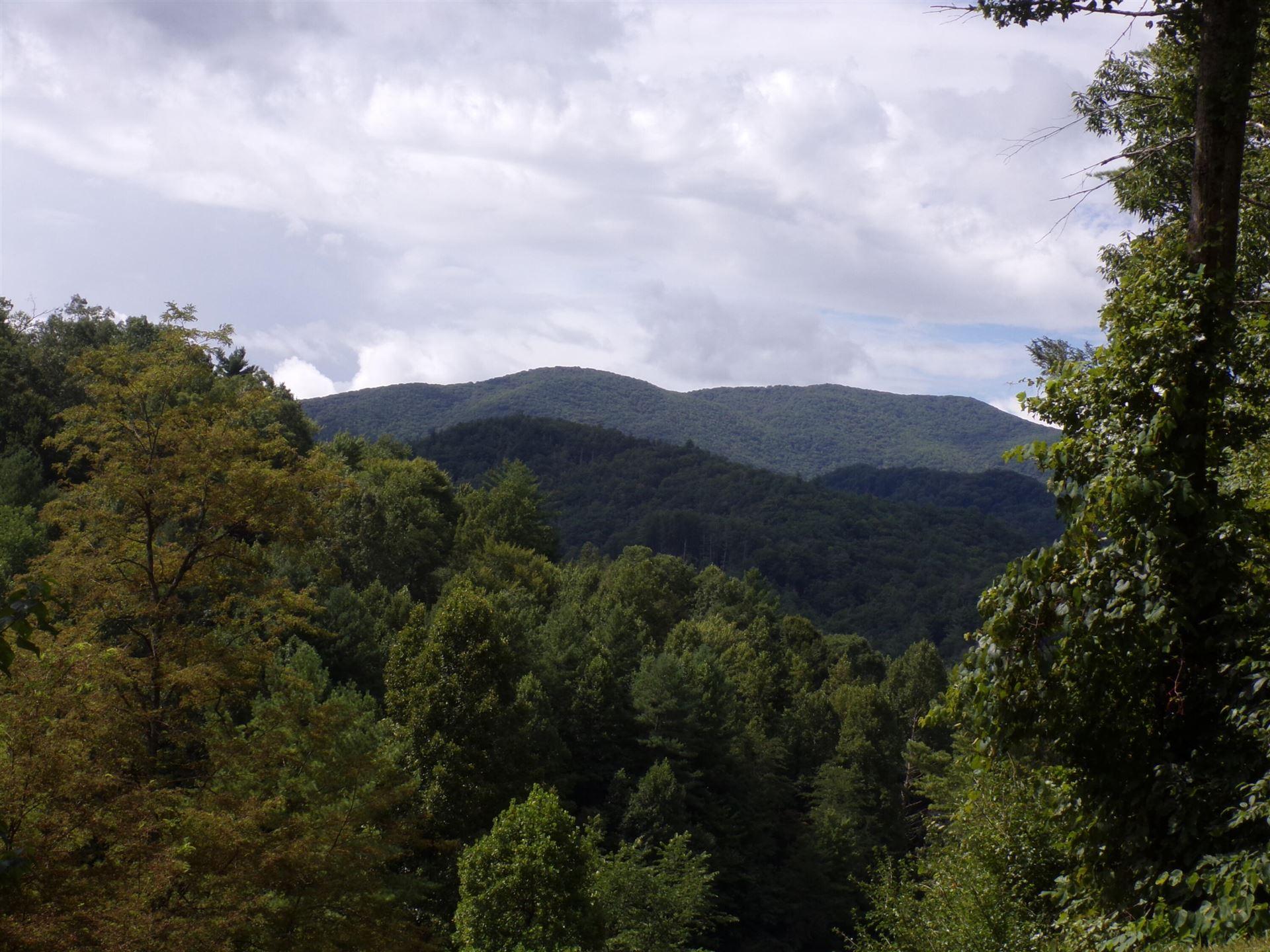 Photo of Lot  1 Lake Ridge Subdivision, Butler, TN 37640 (MLS # 9927236)