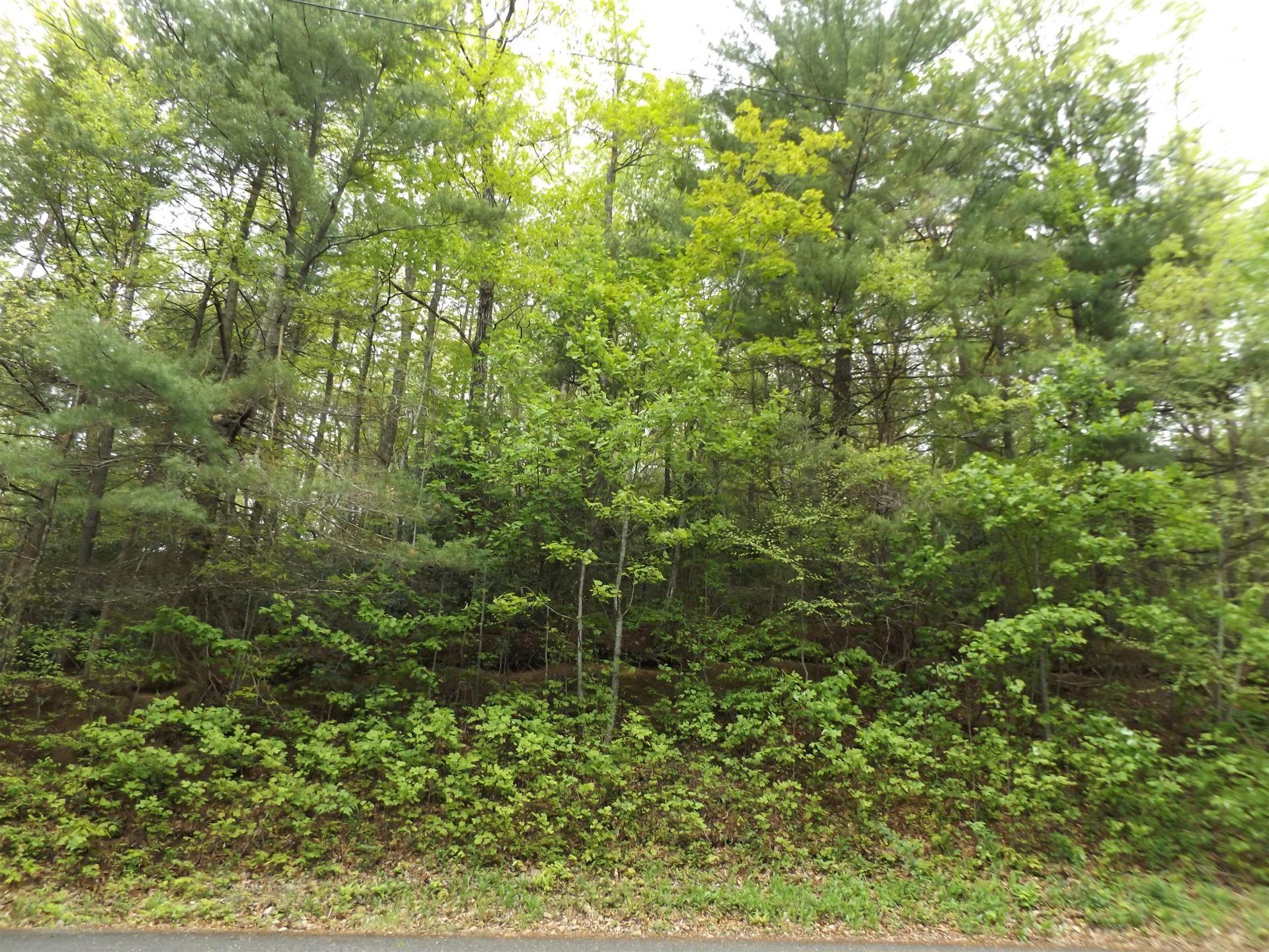 Photo of Lot 38/39 Timber Lane, Hampton, TN 37658 (MLS # 9922239)