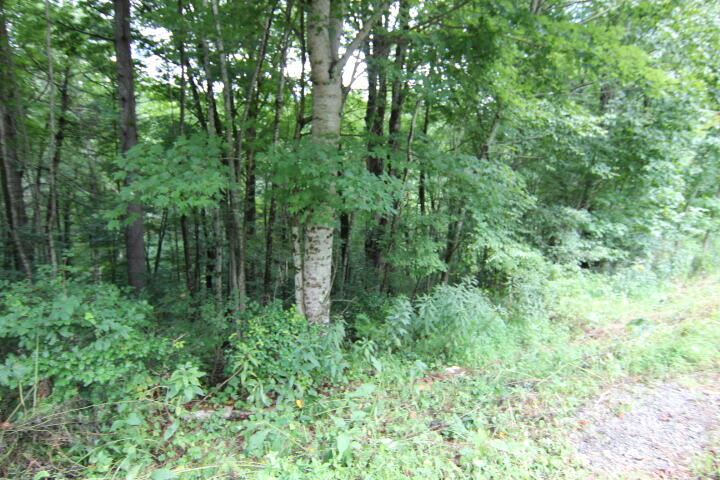 Photo for 000 Laurelwood Drive, Lot #34, Mountain City, TN 37683 (MLS # 9928241)