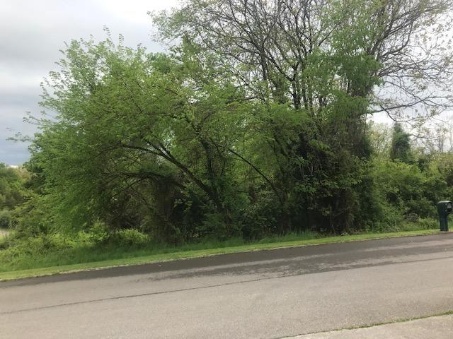 Photo of 994 Pinewood Circle, Morristown, TN 37814 (MLS # 9907248)