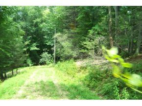 Tiny photo for 000 Hickory Hill Lane, Lot #7, Butler, TN 37640 (MLS # 9919262)