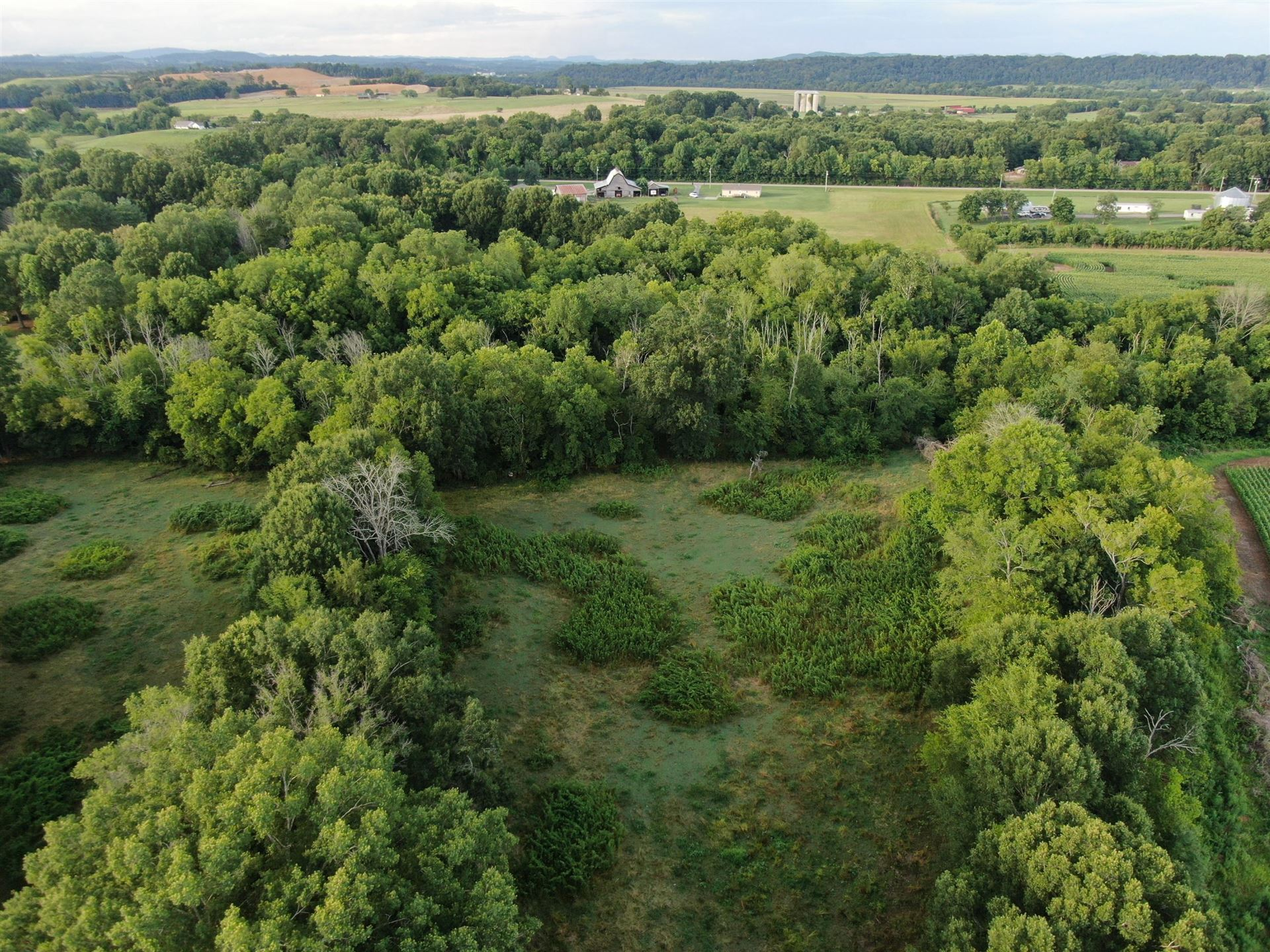 Photo of 35.46 Acre O'Donoghue Road, Morristown, TN 37813 (MLS # 9911278)