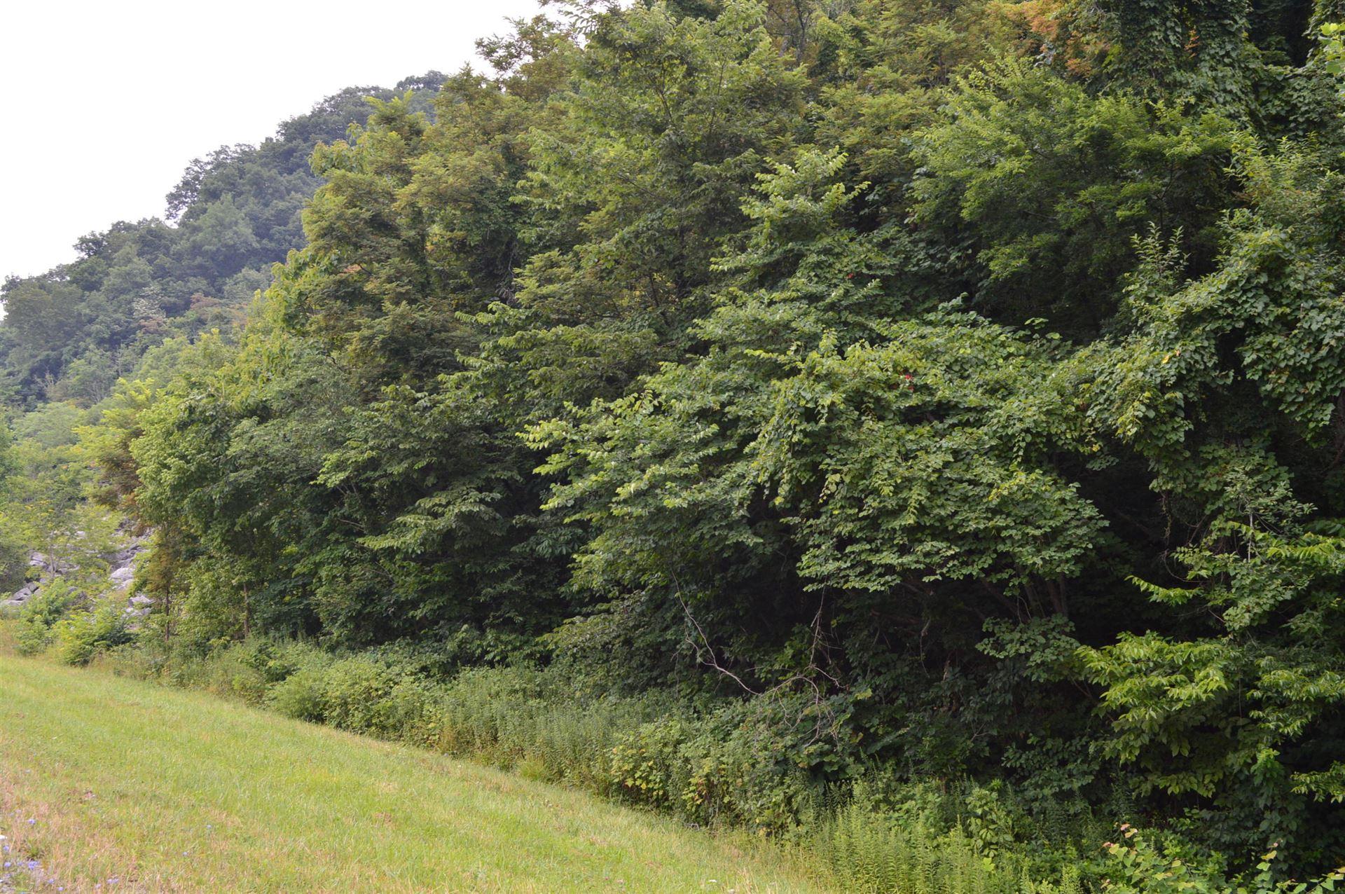 Photo of Tba Highway 25e, Thorn Hill, TN 37881 (MLS # 9926306)