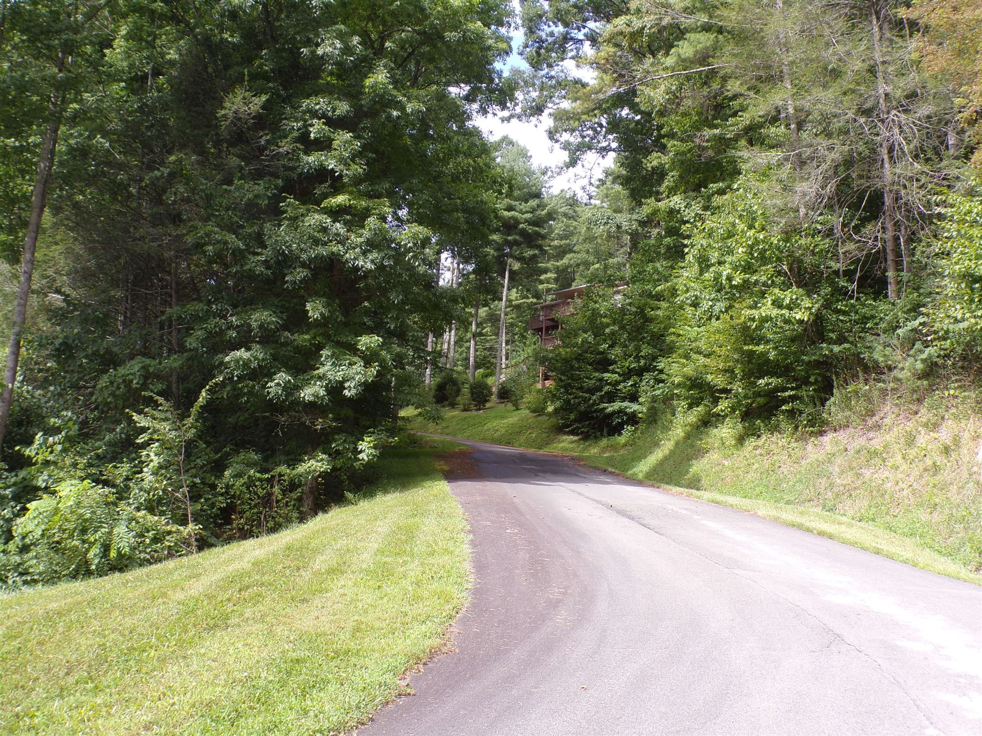 Photo of Lot 28 Lake Ridge Subdivision, Butler, TN 37640 (MLS # 9927308)