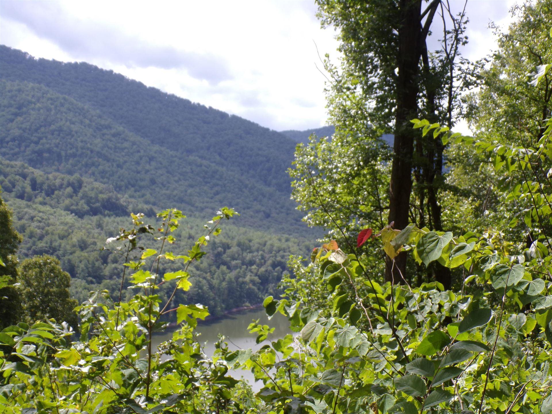 Photo of Lot 30 Lake Ridge Subdivision, Butler, TN 37640 (MLS # 9927310)