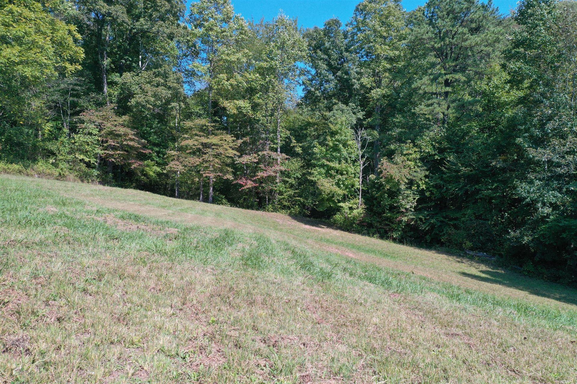 Photo of Tbd Barrett Hollow Road, Rogersville, TN 37857 (MLS # 9929318)