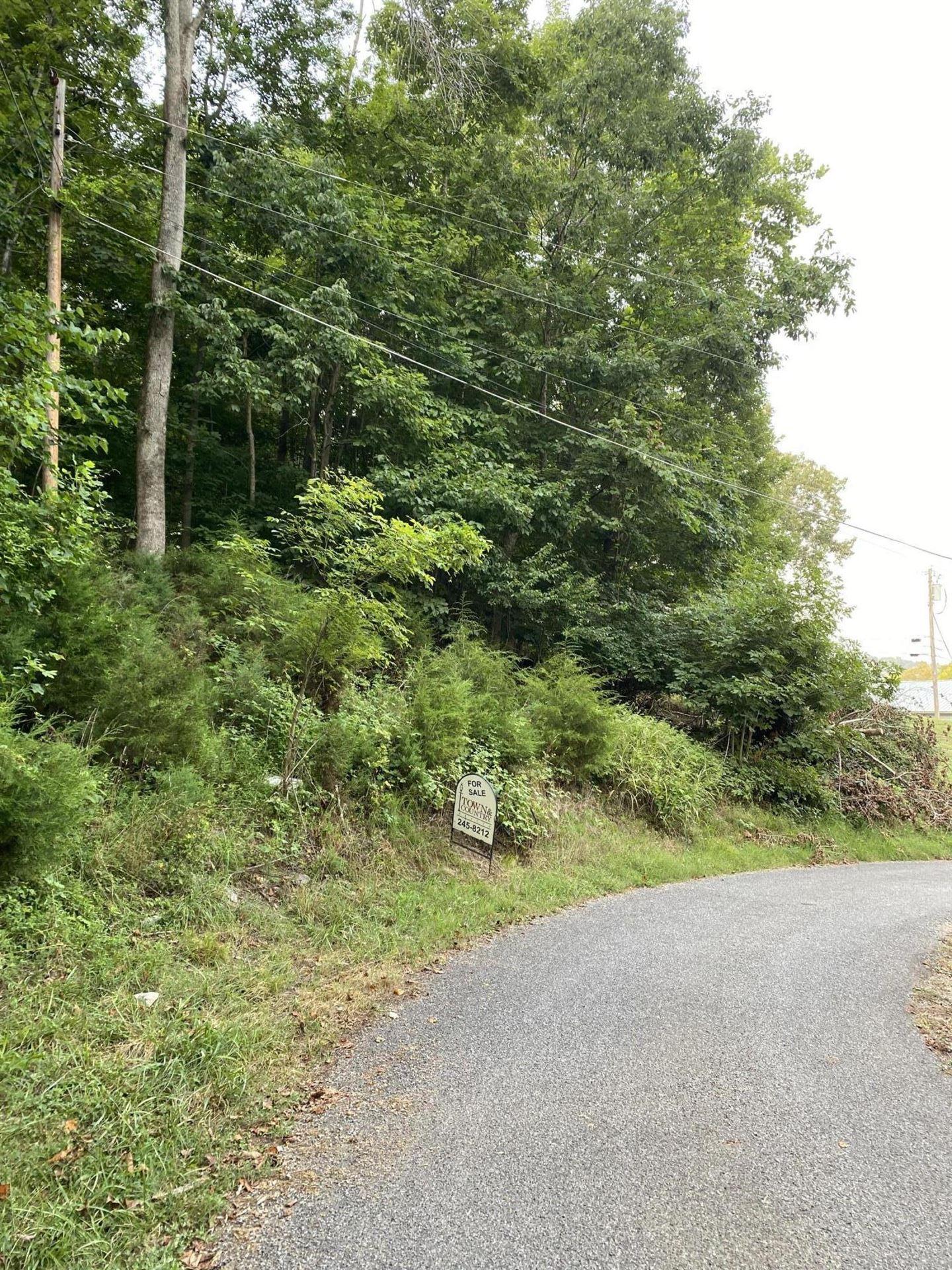 Photo of 0 Valley Street, Gray, TN 37615 (MLS # 9926324)