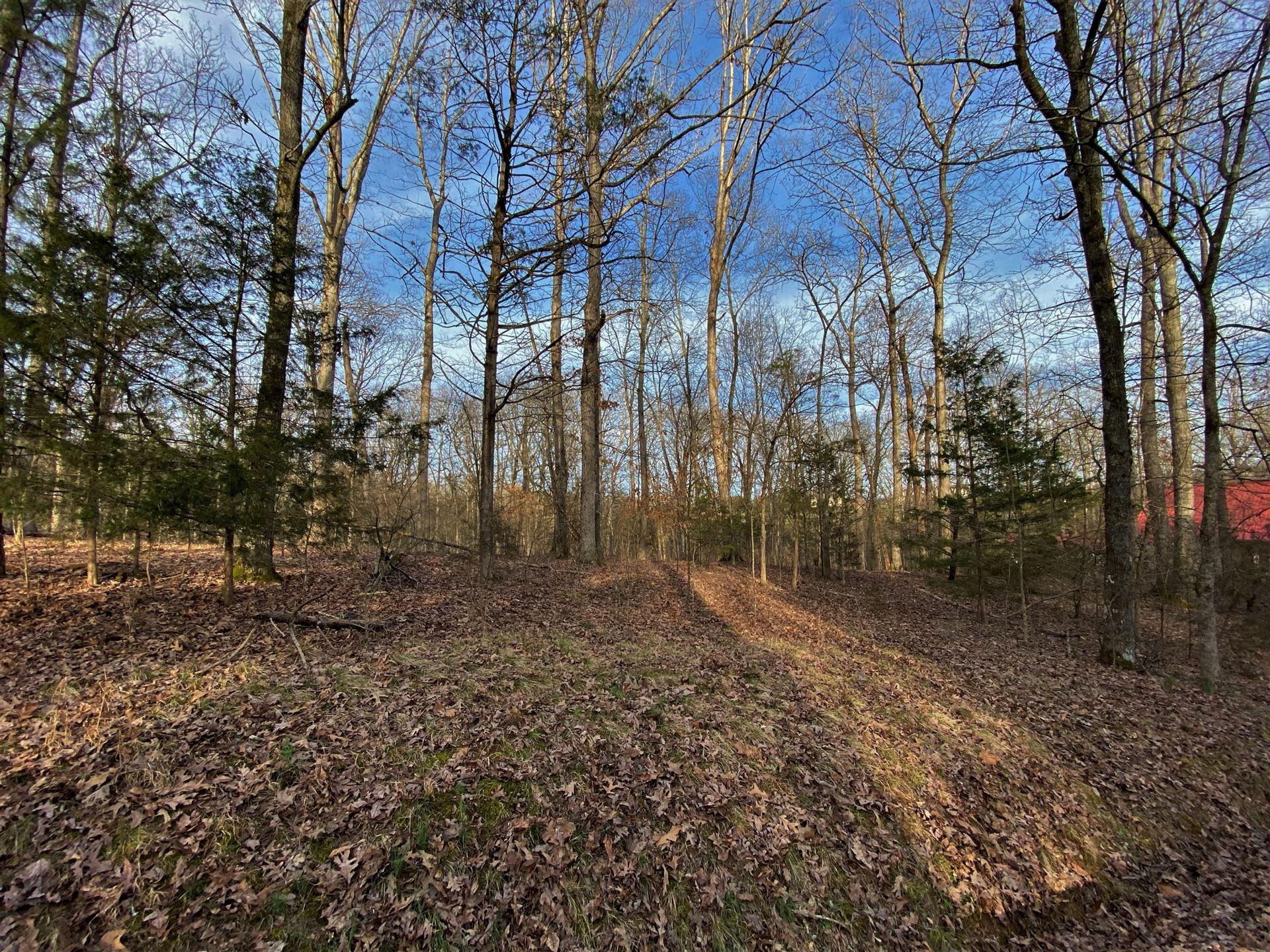Photo of Lots 46-47 Emerald Way, Parrotsville, TN 37843 (MLS # 9905332)