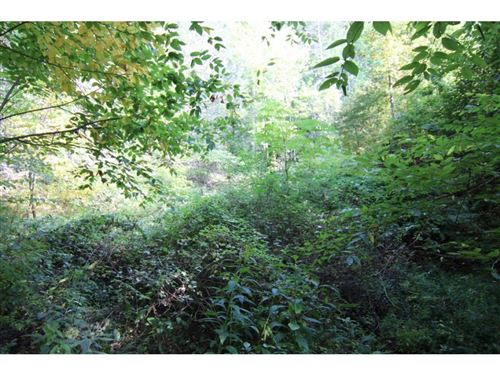 Tiny photo for 00 Waters Road, Laurel Bloomery, TN 37680 (MLS # 427335)