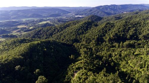 Photo of Off Sandy,Laurel,Forrester Hollow Road, Mountain City, TN 37683 (MLS # 9927336)