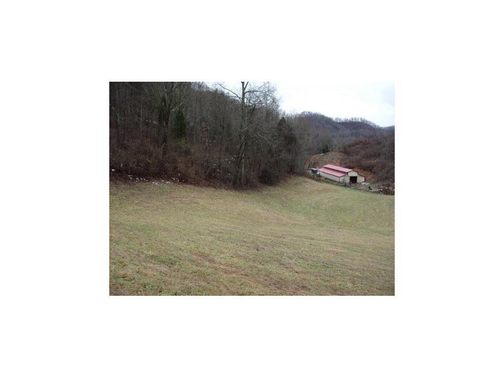 Photo of 0 Wadlow Gap Road, Gate City, VA 24251 (MLS # 9904338)