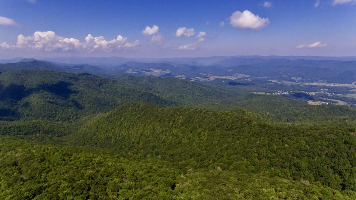 Photo of Tract 5 Off Laurel & Forrester Hollow Road, Mountain City, TN 37683 (MLS # 9927338)