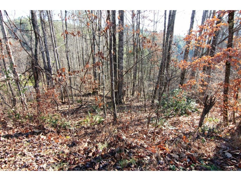 Photo of 000 Hoot Owl Ridge Road, Mountain City, TN 37683 (MLS # 9927342)