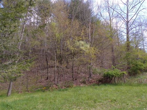 Tiny photo for Tbd Reece Hill Road, Mountain City, TN 37683 (MLS # 9921343)
