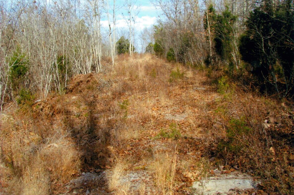 Photo of 00 Hill Station Alley Road, Gate City, VA 24251 (MLS # 9930346)