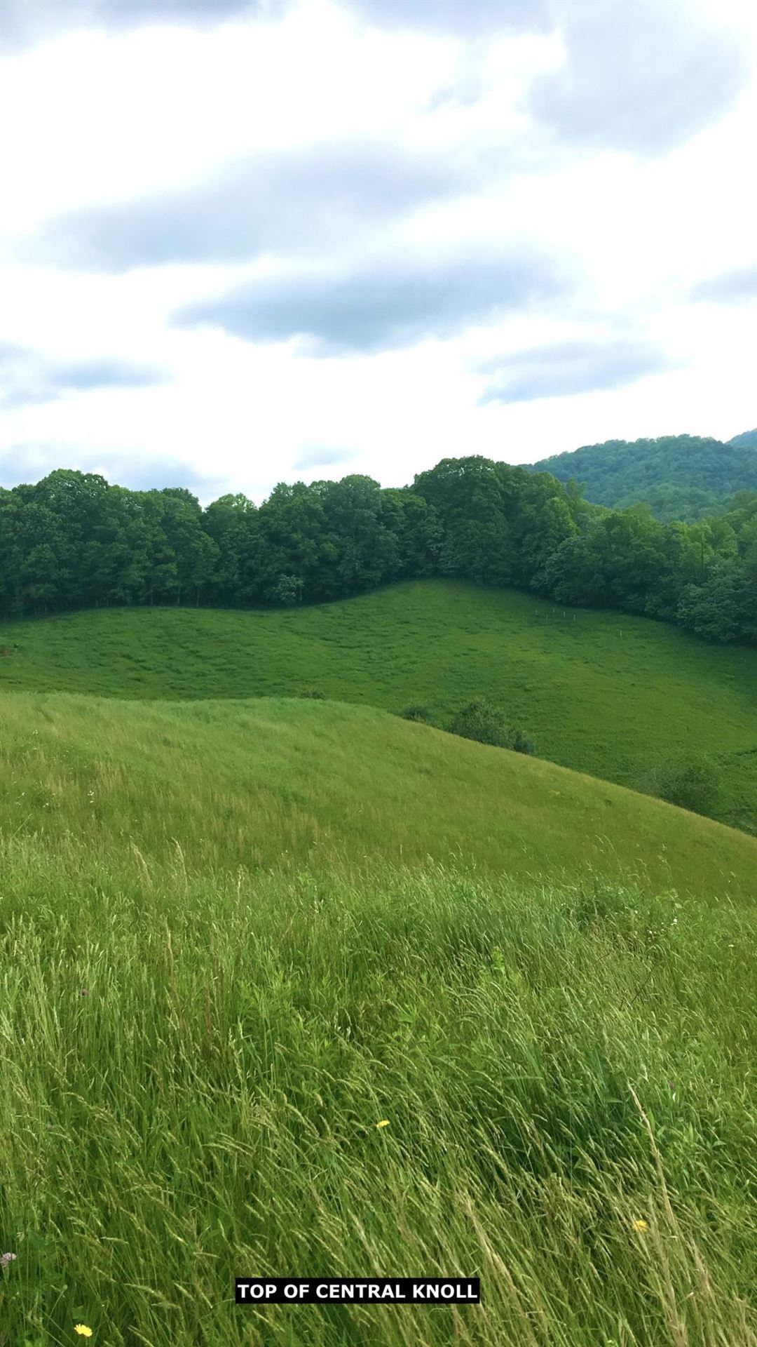 Photo of Tbd South Highway 421, Trade, TN 37691 (MLS # 9915375)