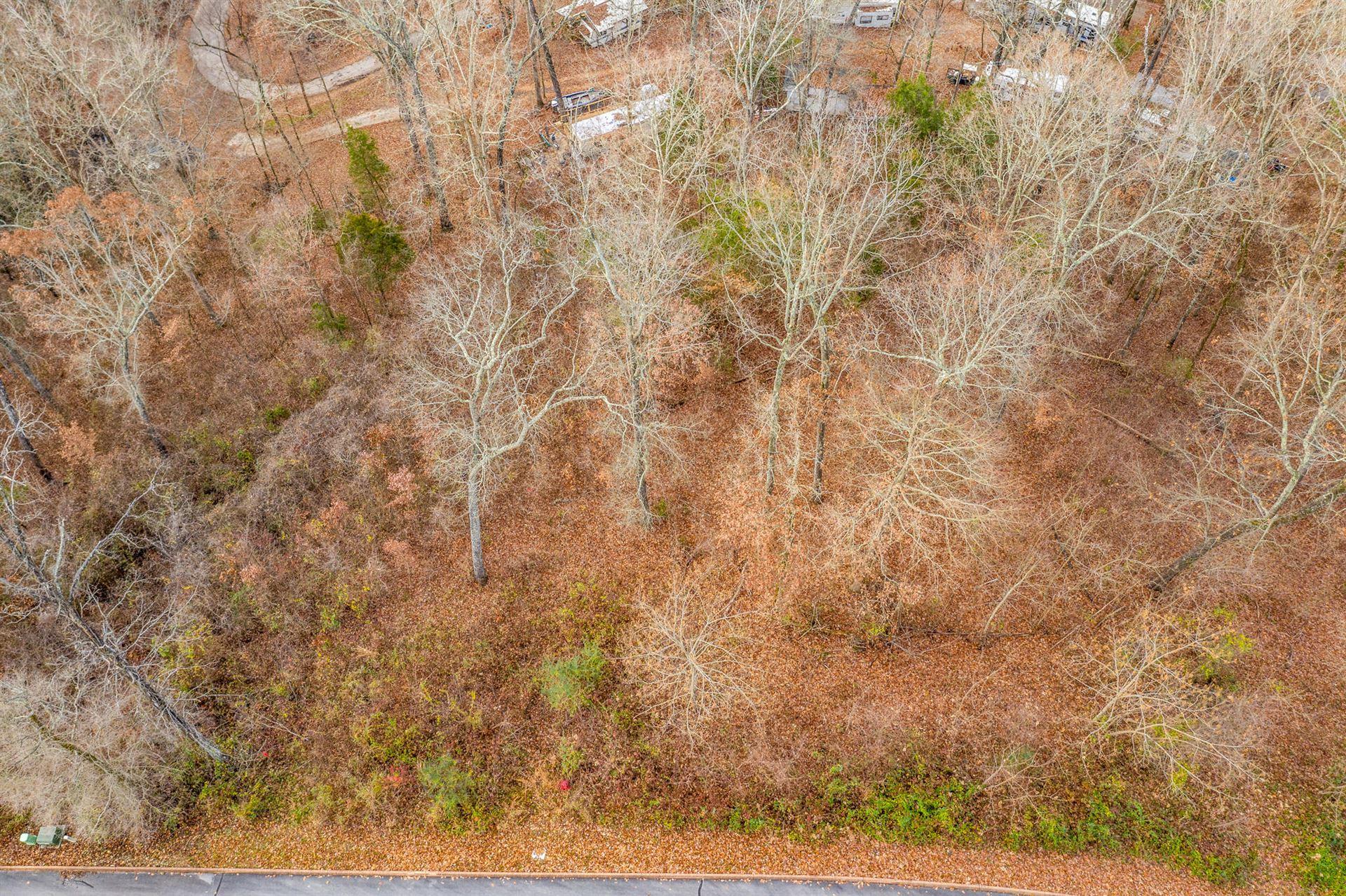 Photo of Lot 25 Aidans Trail, Rutledge, TN 37861 (MLS # 9920390)