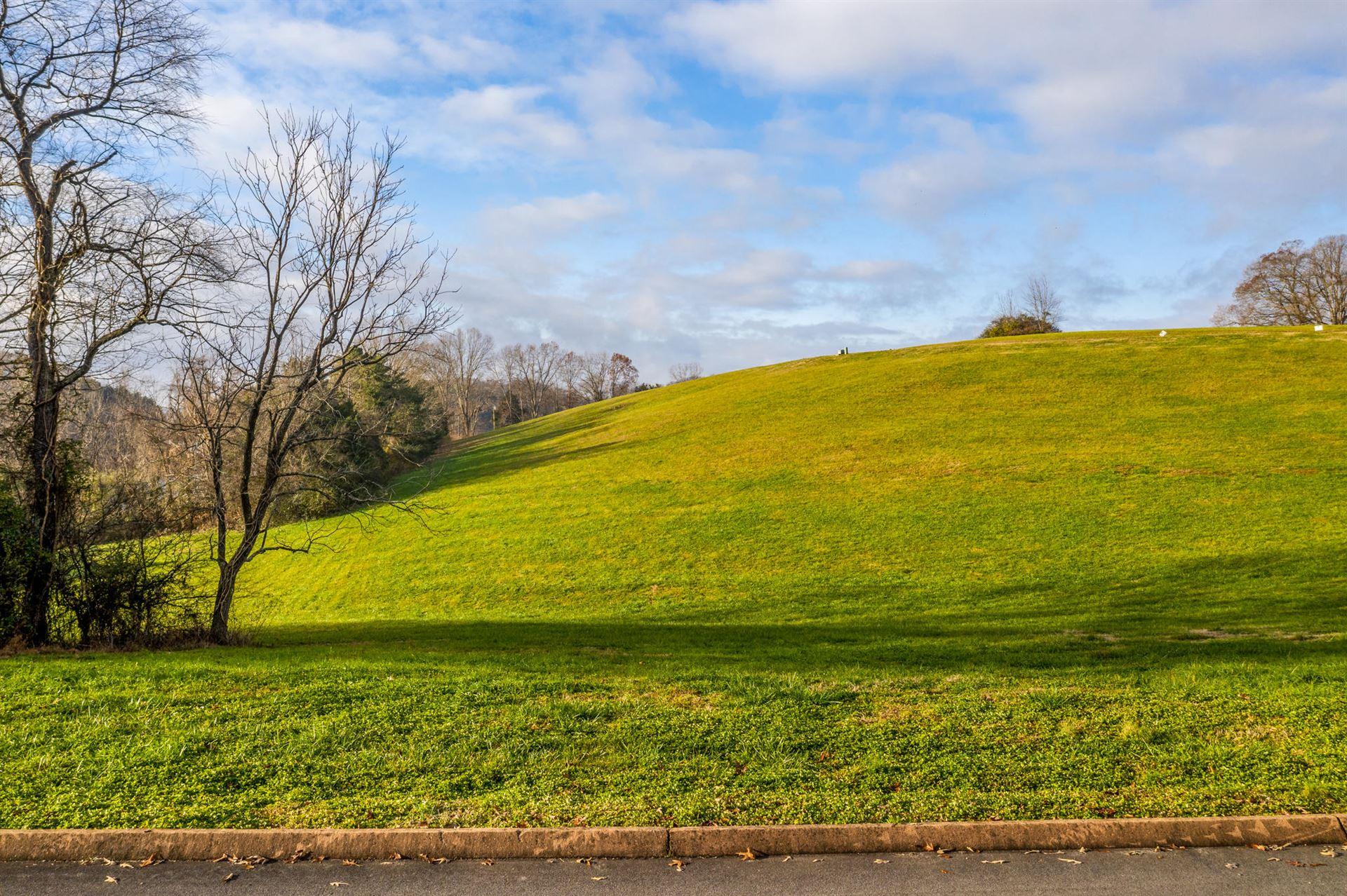 Photo of Lot 43 Cow Poke Lane, Rutledge, TN 37861 (MLS # 9920401)