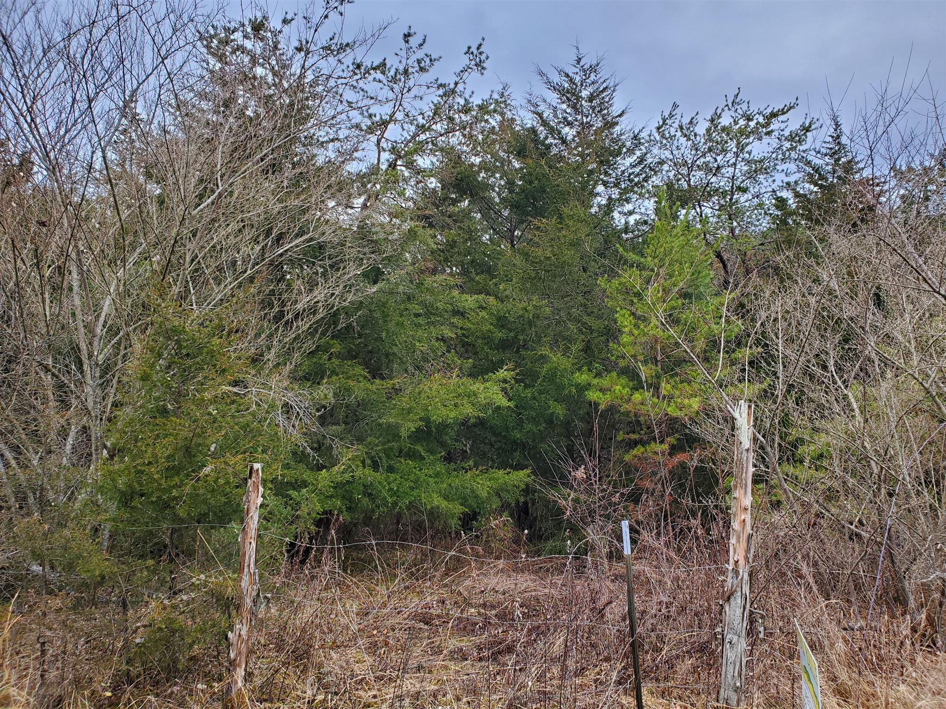 Photo of 1260 Gravely Valley Road, Eidson, TN 37731 (MLS # 9918403)