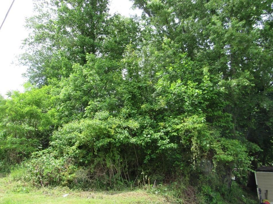 Photo of 0 Hillman Highway, Meadowview, VA 24361 (MLS # 9923412)