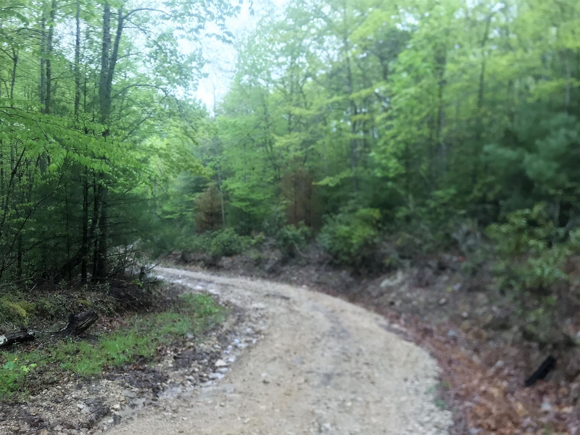 Photo of 000 Southeast Of Wayne Laws Road, Butler, TN 37640 (MLS # 9922416)