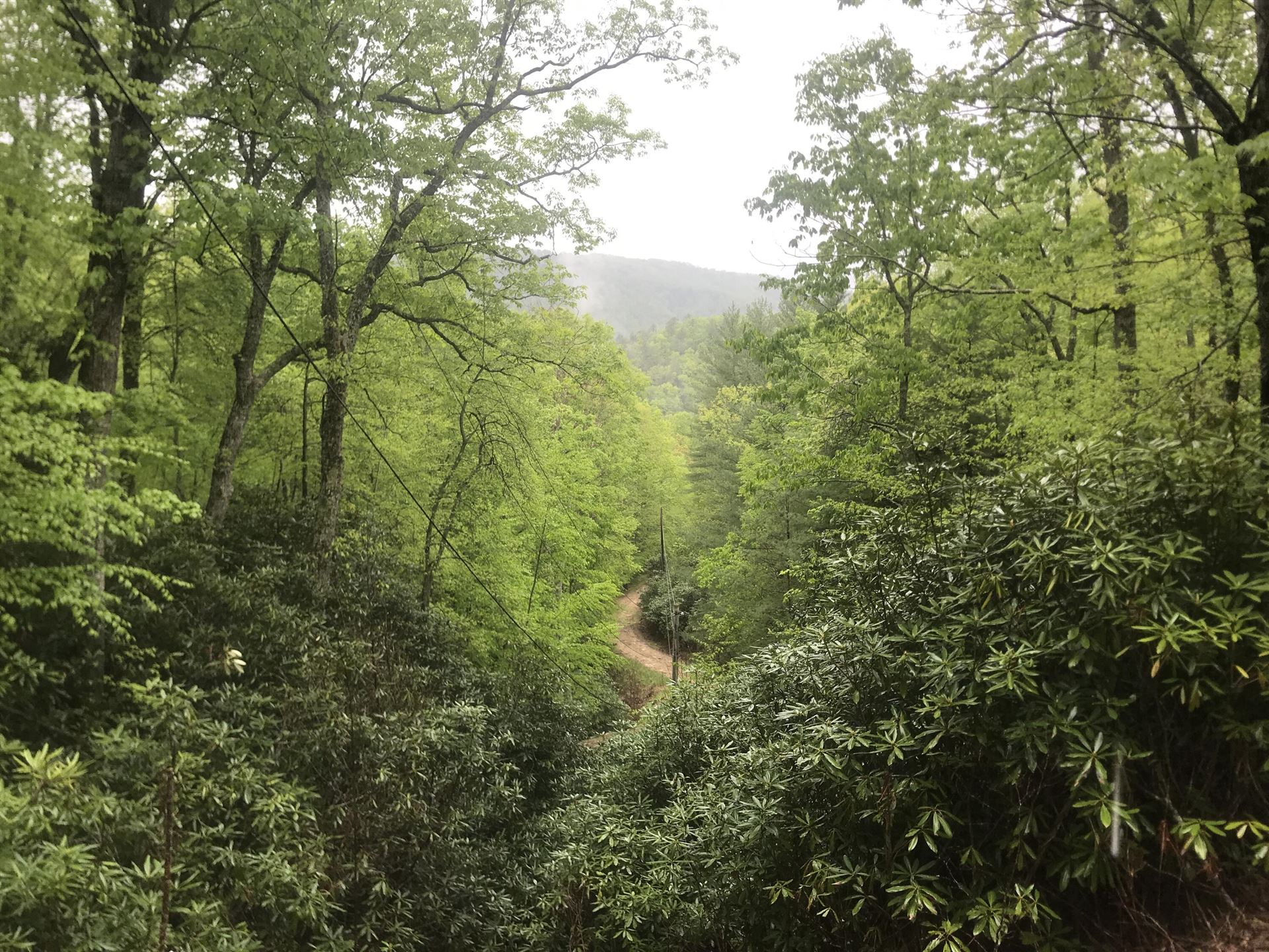 Photo of 000 Southeast Of Wayne Laws Road, Bulter, TN 37640 (MLS # 9922422)