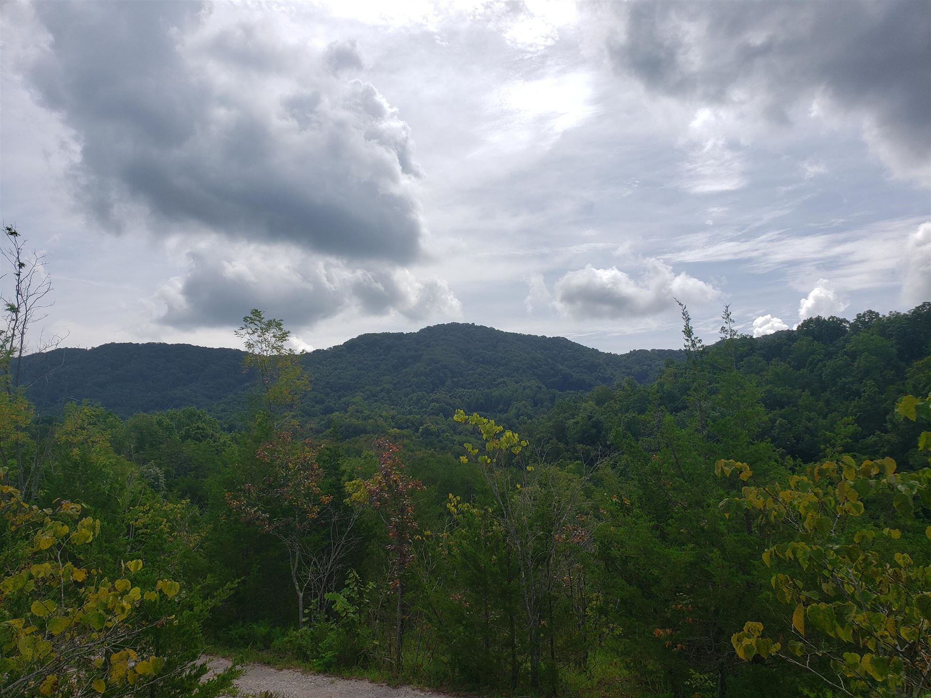 Photo of 00 Mountain Valley Highway, Thorn Hill, TN 37881 (MLS # 9927428)
