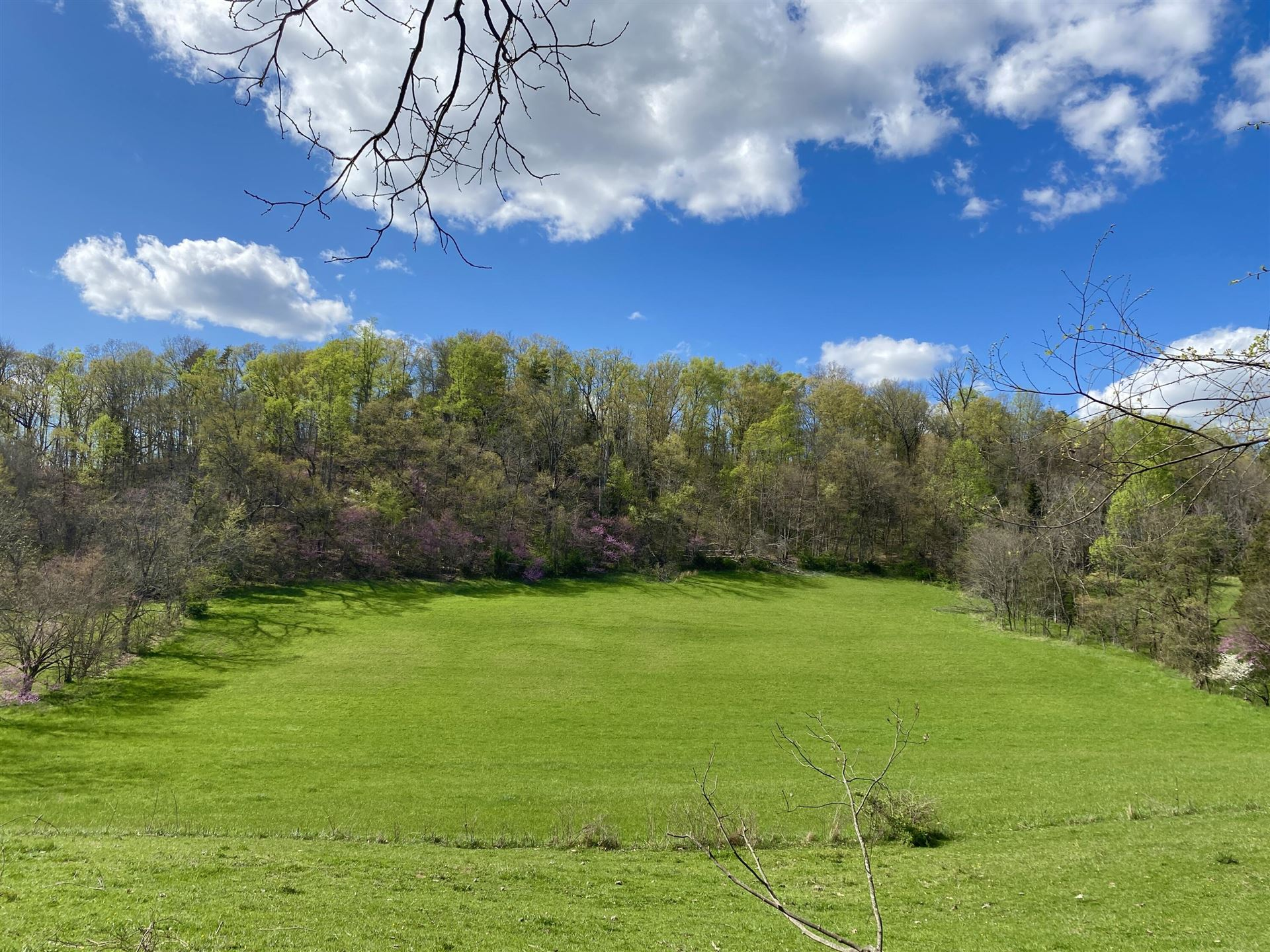 Photo of Tbd Glover Gibson Road, Fall Branch, TN 37656 (MLS # 9926468)